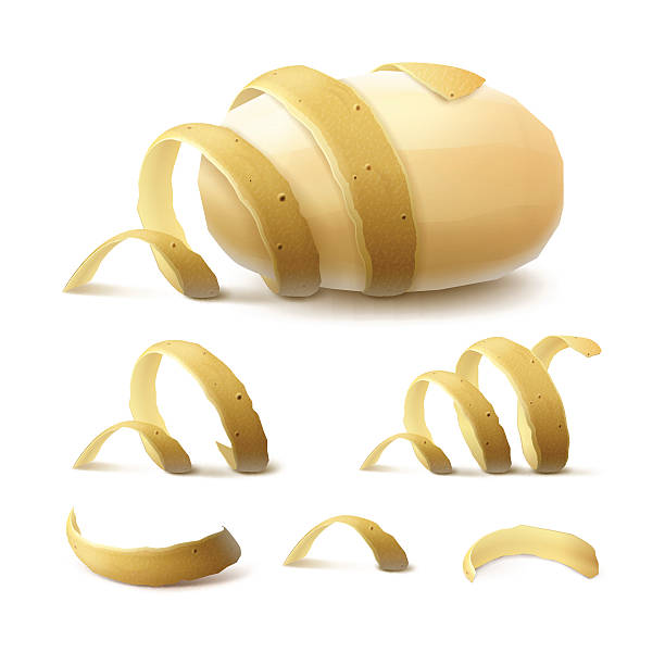 illustrations, cliparts, dessins animés et icônes de new yellow raw whole peeled potato with twisted peel isolated - pelé