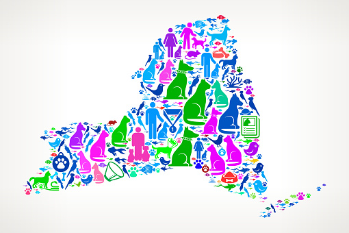 New York Pets and Domestic Animals Vector Icons Background
