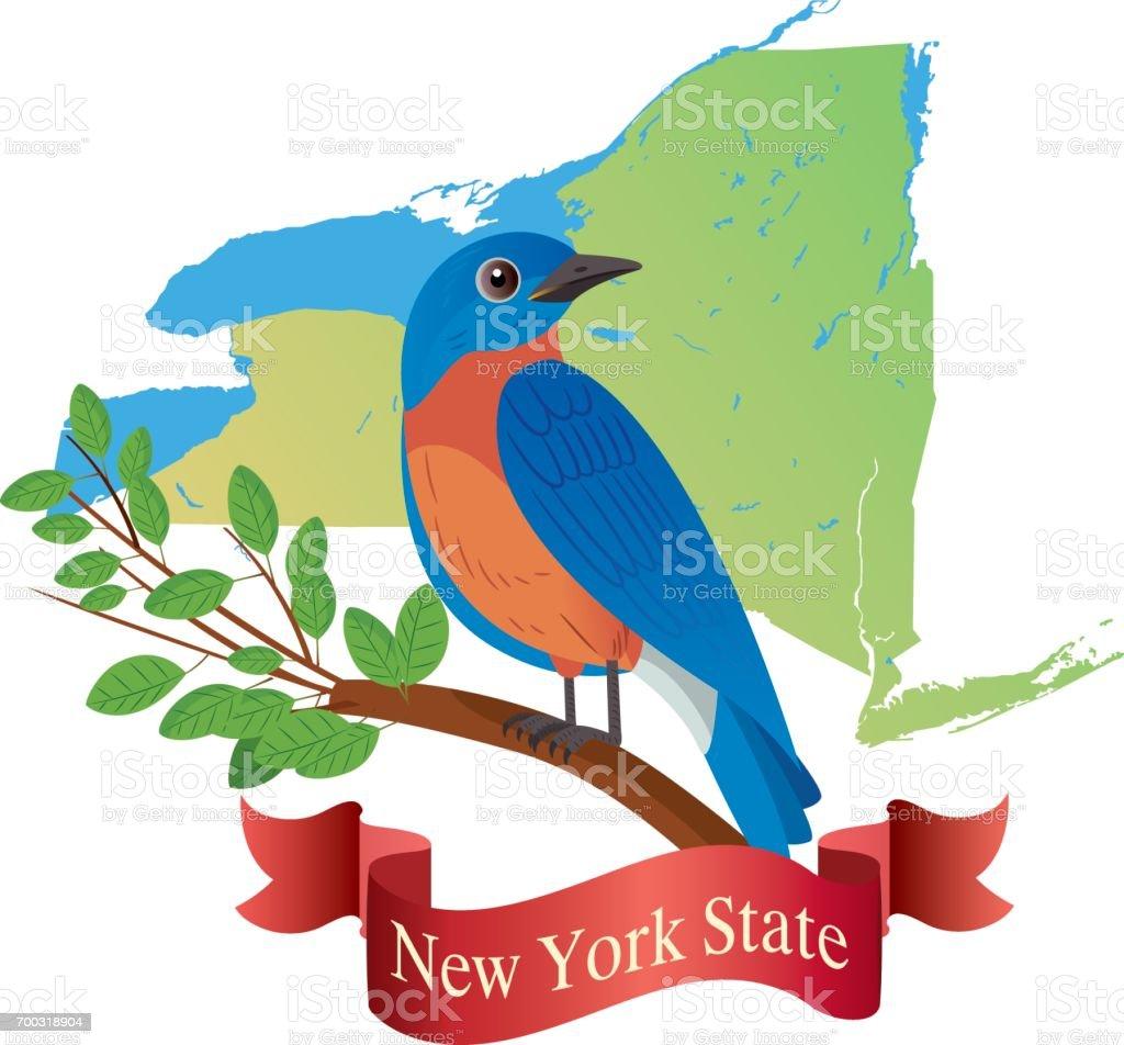 New York State ( Eastern Bluebird ) vector art illustration