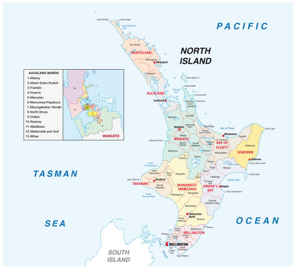 ilustrações de stock, clip art, desenhos animados e ícones de new zealand north island administrative and political map - wellington