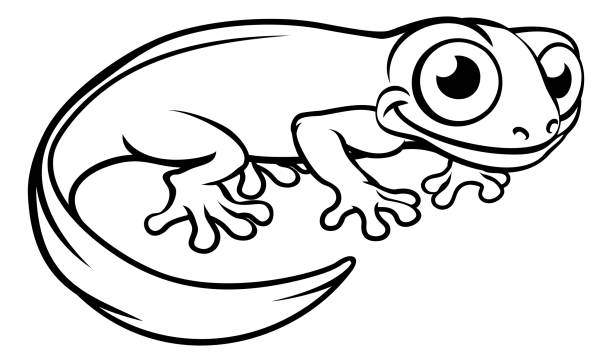 Royalty Free Newt Clip Art, Vector Images & Illustrations ...