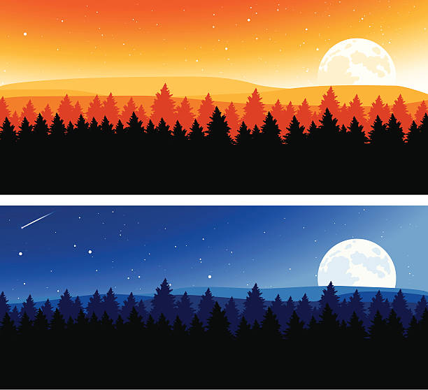 Night and Day Background Night and day backgrounds with copy space. treelined stock illustrations