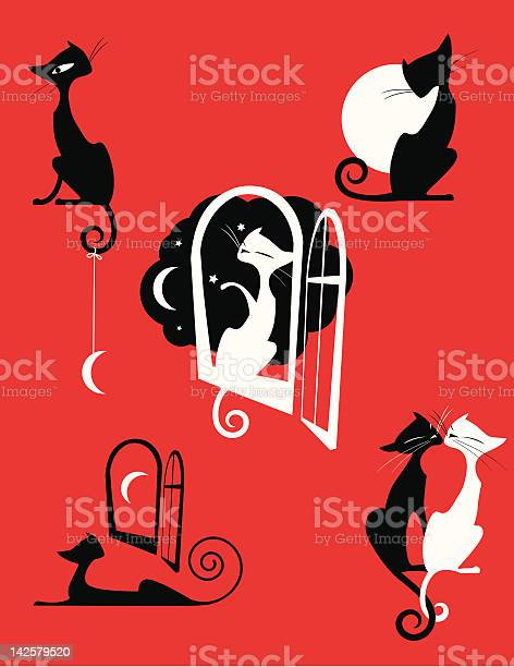 Night cats vector id142579520?b=1&k=6&m=142579520&s=612x612&h=hp81dyqd5p3hxjw4ufygvzs2knailsbwcy04 cee6b4=