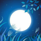 nature,blue,moonlight,grass,night,countryside,landscape,scenic,full moon,outdoor,background,design