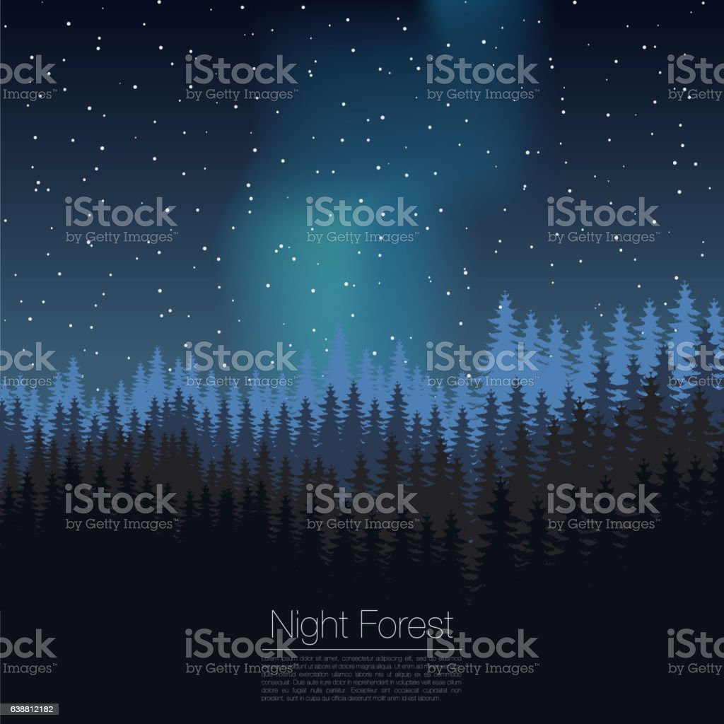 night forest design template vector coniferous silhouette woods