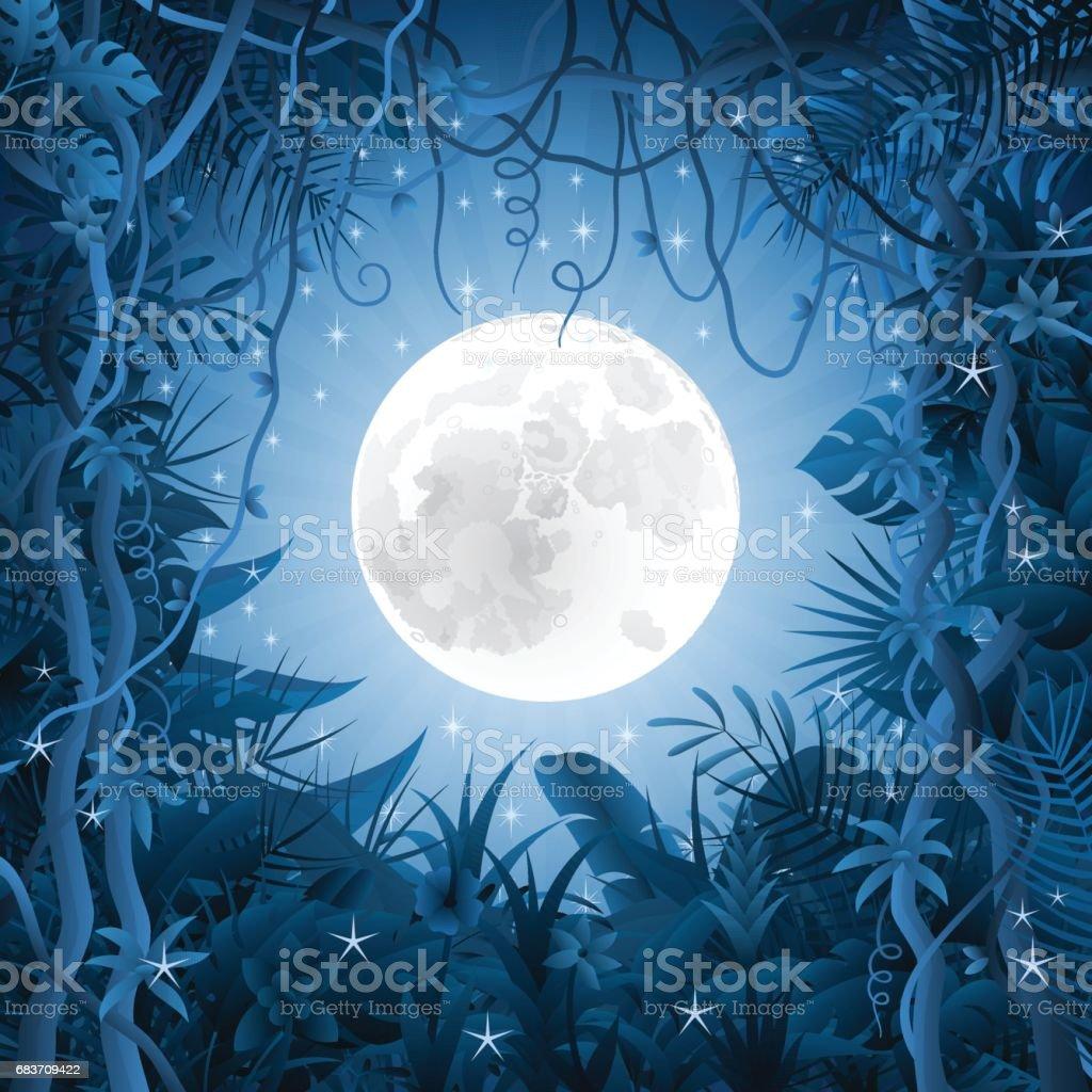 La noche en la selva - ilustración de arte vectorial