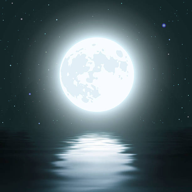 Night Moon Over the Water vector art illustration