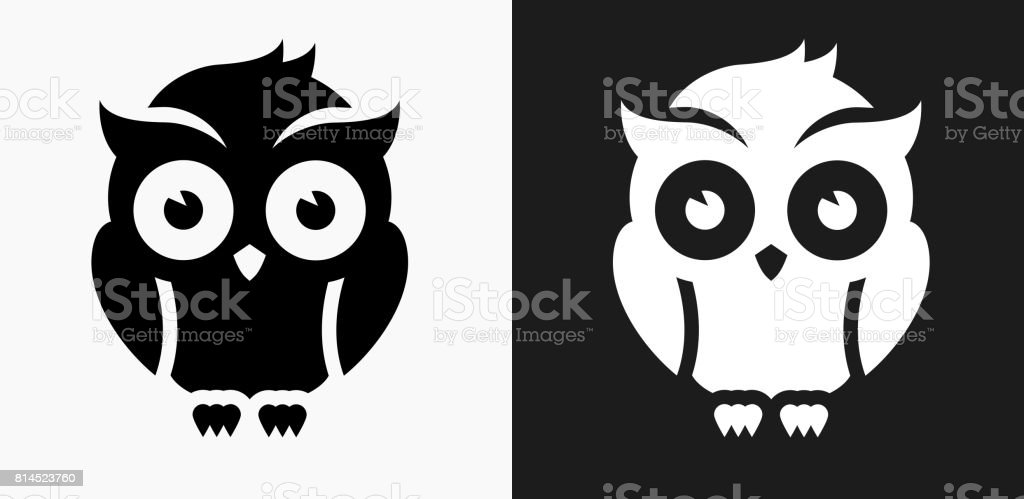 Night Owl Icon on Black and White Vector Backgrounds vector art illustration