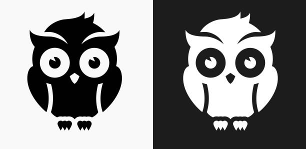 night owl icon on black and white vector backgrounds - black and white owl stock illustrations, clip art, cartoons, & icons