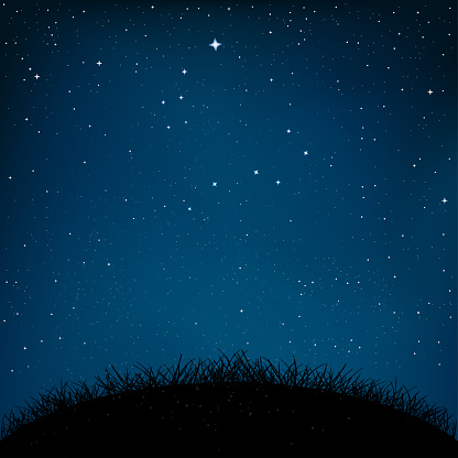 night starry sky grass and ground clipart