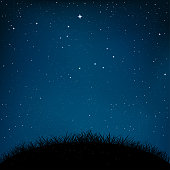 Night starry sky and dark grass ground silhouette background. Nature nightly meadow landscape with shiny stars. Constellation Big and small Dipper. Great Bear star