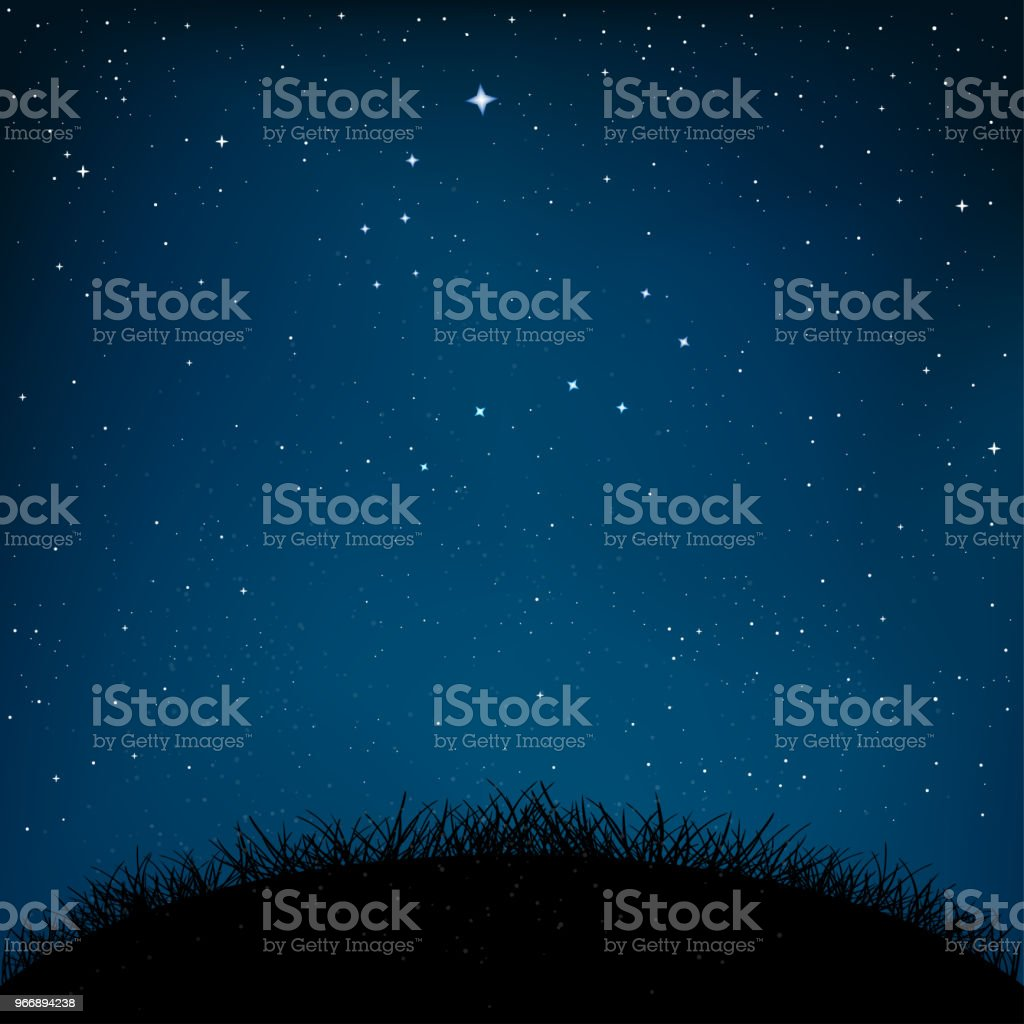 night starry sky grass and ground vector art illustration