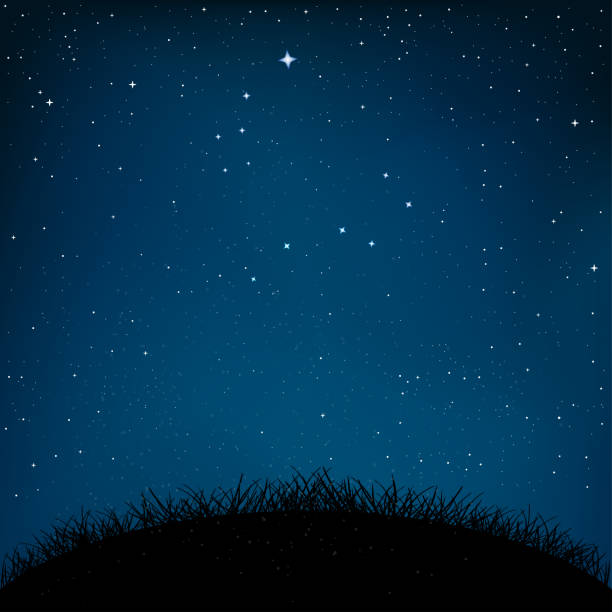illustrazioni stock, clip art, cartoni animati e icone di tendenza di night starry sky grass and ground - stelle
