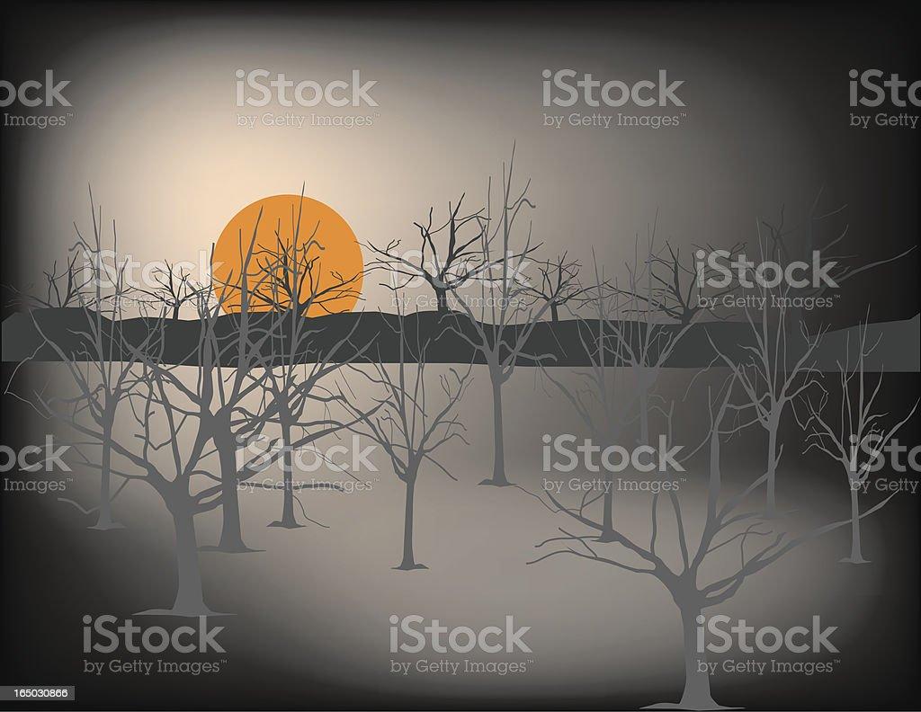 nightfall in the woods royalty-free stock vector art