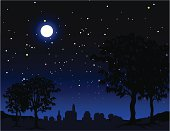 A vector illustration of a rural scene at night.
