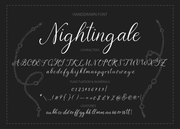 Nightingale. Handdrawn calligraphic vector font. Nightingale. Handdrawn calligraphic vector font. Modern gentle calligraphy. handwriting stock illustrations