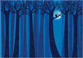 Night,Trees, Owl and Moon - Forest Background