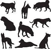 Nine Dog Silhouettes