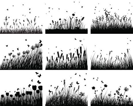 nine meadow backgrounds