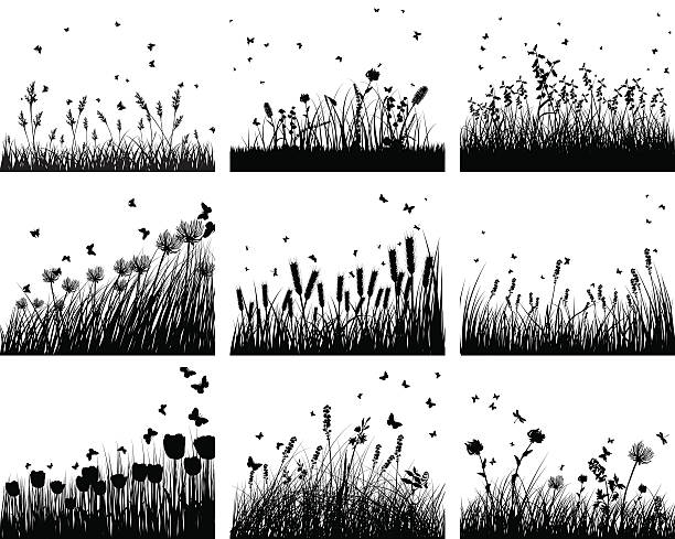 stockillustraties, clipart, cartoons en iconen met nine meadow backgrounds - grassenfamilie