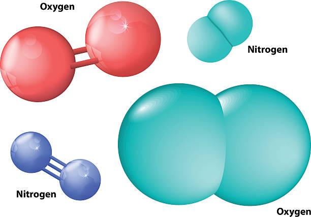 stickstoff und sauerstoff-molekül - sauerstoff stock-grafiken, -clipart, -cartoons und -symbole