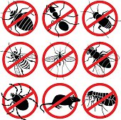 "Vector icons of pest insects with a ""no"" symbol: bed bug, ant, cockroach, yellow jacket, mosquito, fly, tick, rat, flea."