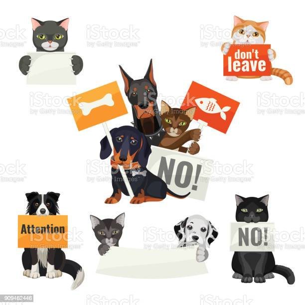 No bullying of animals protesting cats and dogs with boards vector id909462446?b=1&k=6&m=909462446&s=612x612&h=ejn6v7x2ixkch 1ucubff3ypbyvlokdang2oifrvj7k=