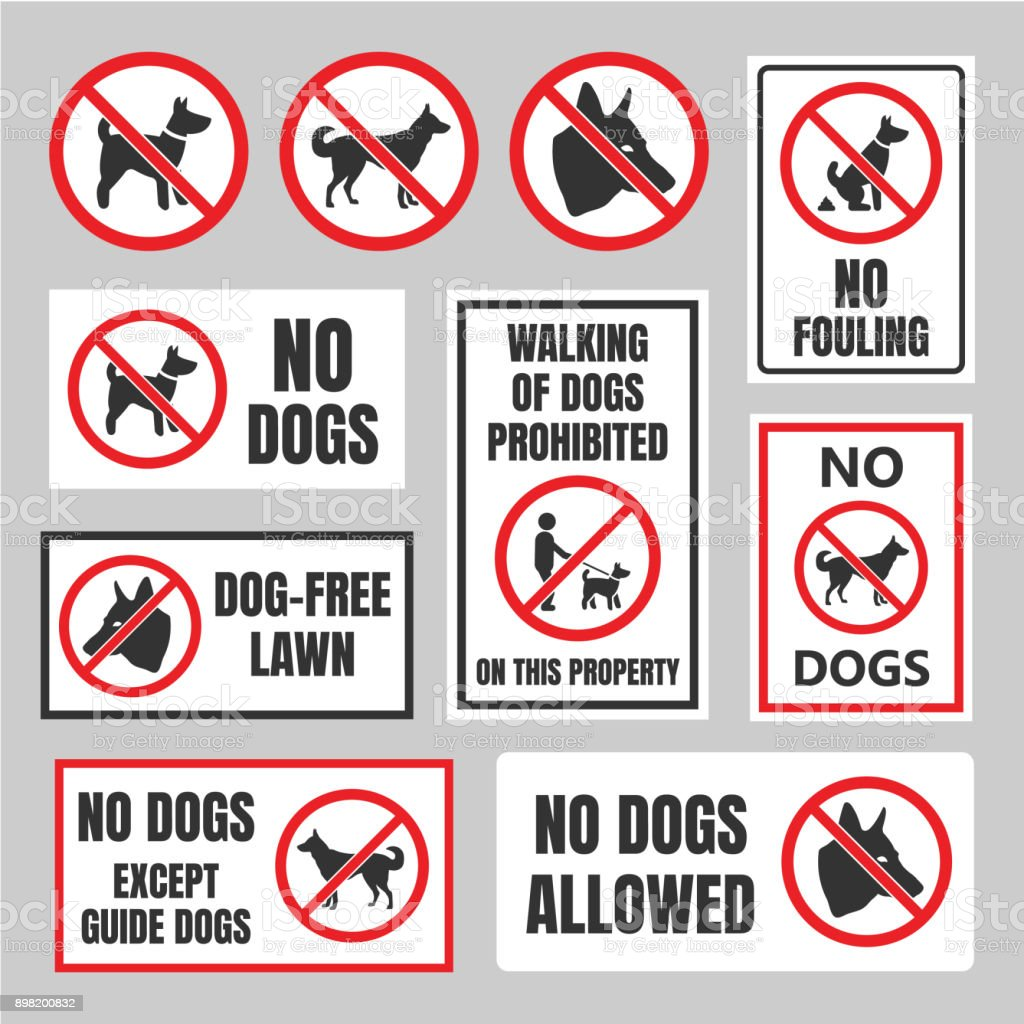 no dogs signs dog prohibited labels stock vector art more images