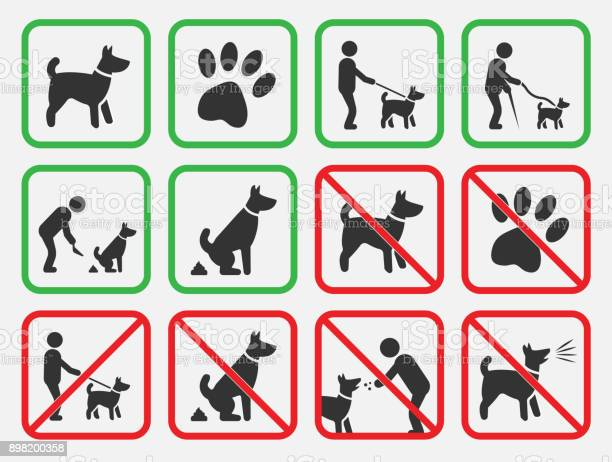 No dogs signs dogs allowed and prohibited icons vector id898200358?b=1&k=6&m=898200358&s=612x612&h=mob5sknwbq8wjauzcrb9z7ebc ypgn1twstaq72v7v0=