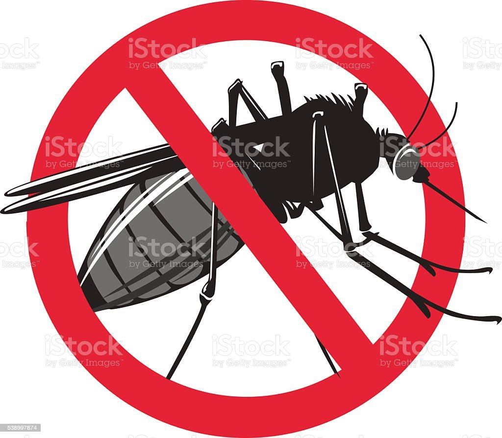 No mosquito sign isolated on white background. vector art illustration