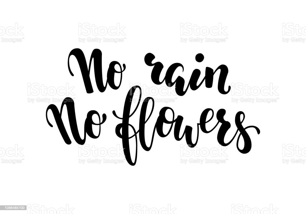 No Rain No Flowers Postcard Inspirational And Motivational Quotes Hand Brush Lettering And Typography Design Art Your Designs Tshirts Posters