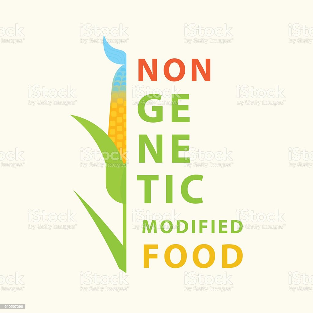 Non GMO food. Vector poster with hybrid of corn, fish vector art illustration