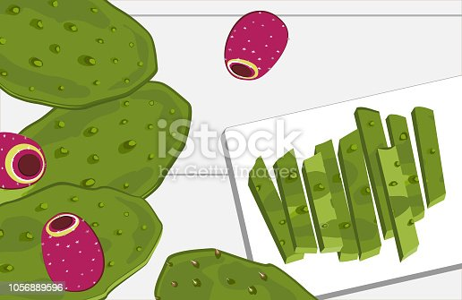 Nopal cactus paddle and fruits, peeled and cut on the table. National Mexican cuisine food ingredient. Hand drawn cartoon style vector illustration.