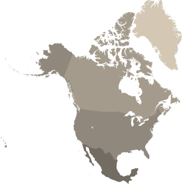 north america map vector outline with countries borders in gray background. highly detailed accurate map of north american countries including usa, canada, and mexico - north america maps stock illustrations, clip art, cartoons, & icons