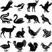 Vector icons of a variety of north American animals.