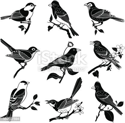Vector illustrations of various North American birds featuring a chickadee, purple finch, robin, hermit thrush, Baltimore oriole, bluebird, goldfinch, mockingbird, cardinal