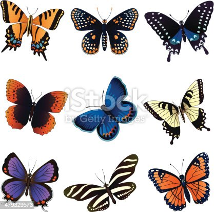 Vector illustrations of common north American butterflies: two tailed swallowtail, Baltimore Checkerspot, Spicebush swallowtail, Diana fritillary, Karner blue, Eastern Tiger swallowtail, Colorado hairstreak, Zebra longwing, Viceroy.