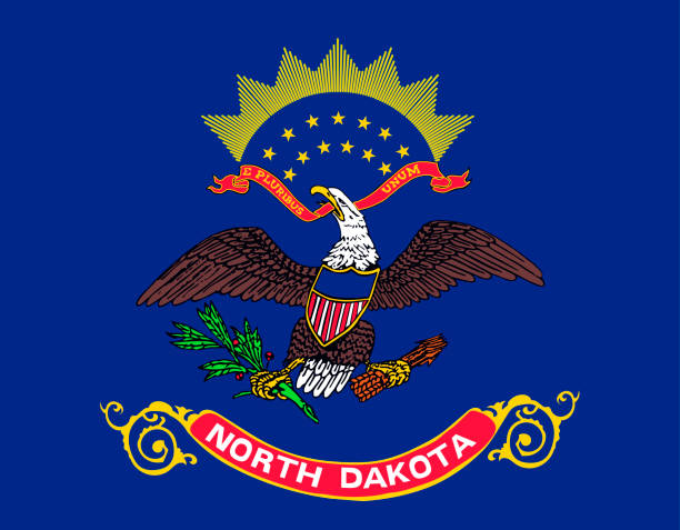 ilustrações, clipart, desenhos animados e ícones de bandeira do estado de dakota do norte. estados unidos da américa - bandeira union jack