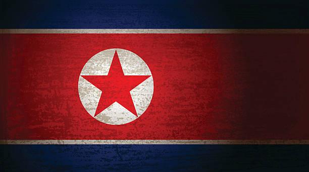 ilustraciones, imágenes clip art, dibujos animados e iconos de stock de north korea flag with grunge texture - bandera coreana