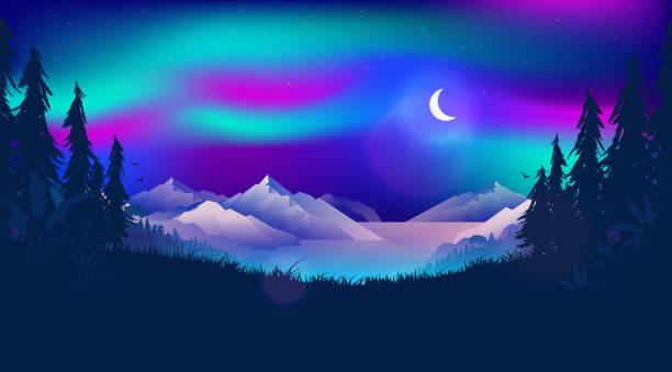 illustrazioni stock, clip art, cartoni animati e icone di tendenza di northern lights at night landscape - fiordi