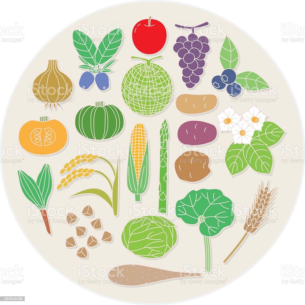 Northern vegetables and fruits. Japan vector art illustration