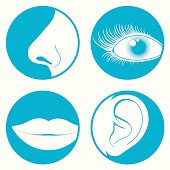 Nose, eye, mouth and ear pictograms