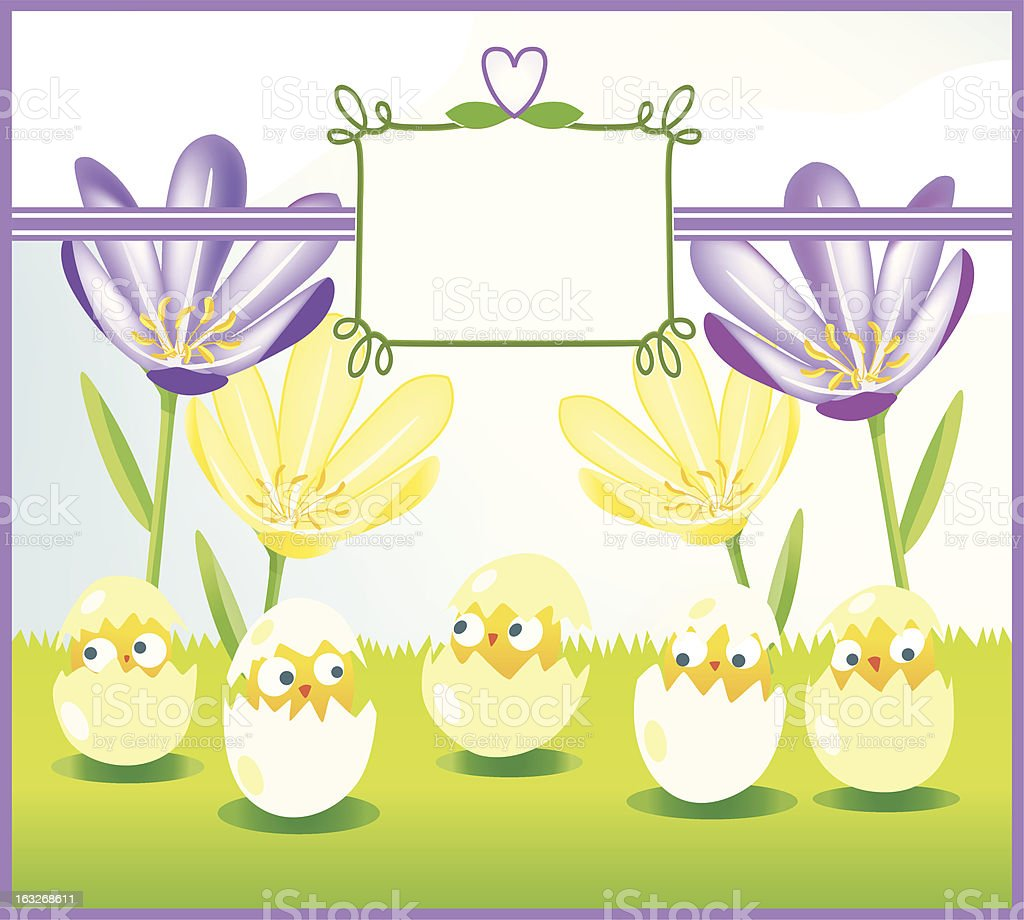 nosey chicks on an easterbackground with label. royalty-free nosey chicks on an easterbackground with label stock vector art & more images of animal