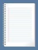 Blank lined paper spiral notebook.