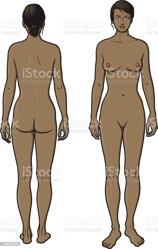 Mujer Desnuda La Parte Delantera Y Trasera - Arte vectorial de stock ...