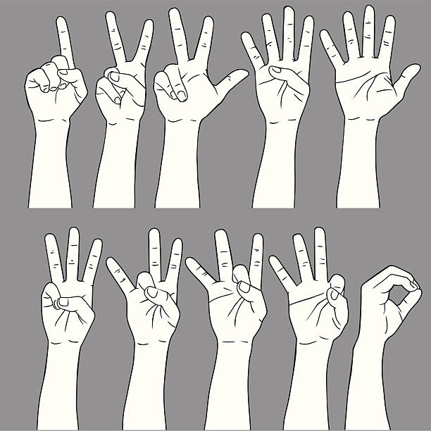 Number Sign Language Vector File of Hand Showing Sign Language of Number counting stock illustrations