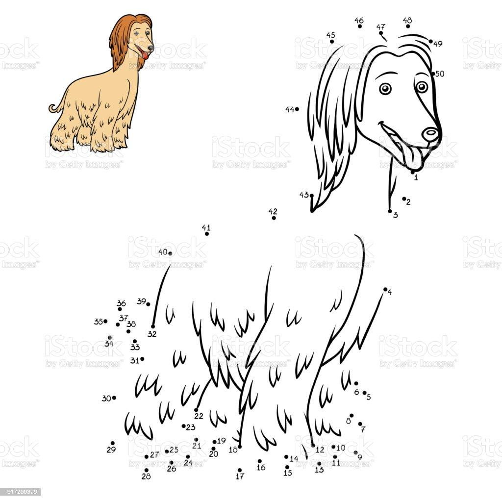 Juego De Números Juego De La Educación Razas De Perros Galgo Afgano ...