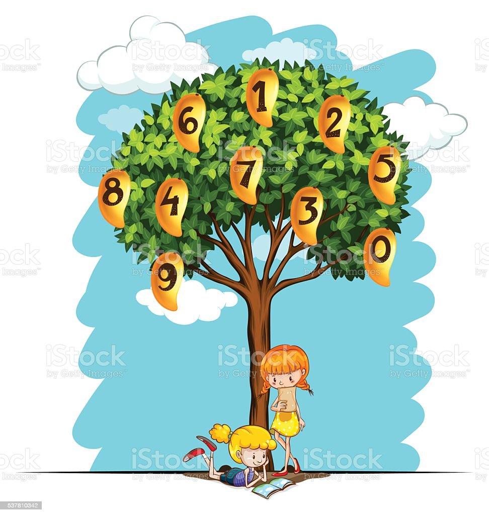 Numbers On Mango Tree Stock Illustration Download Image Now Istock Foam finger toy cartoon mango tree above table. https www istockphoto com vector numbers on mango tree gm537810342 95496715