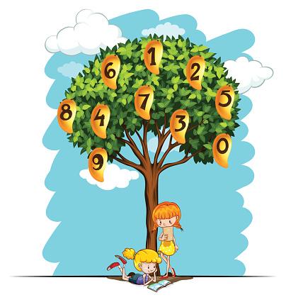 Numbers on mango tree