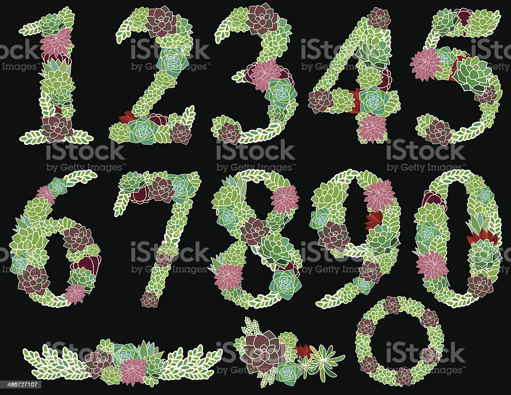 Numbers one to zero Succulent garden royalty-free stock vector art